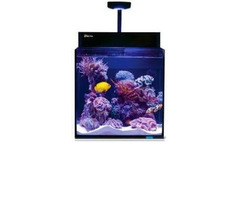 Akwarium morskie Red Sea Max Nano (opcja bez szafki)