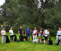 Szkolenie psów. Behawiorysta - konsultacje
