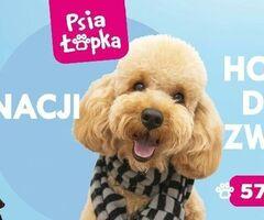 """Psi Fryzjer """"Psia Łapka"""" Groomer Strzyżenie Salon Dla Psów Pielęgnacji"""