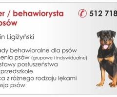 Behawiorysta /trener psów