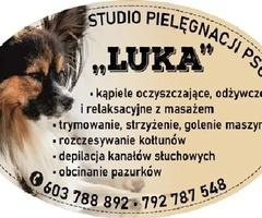"""Salon dla Psów """"Luka"""" Groomer Psi Fryzjer Pielęgnacja Zwierząt"""